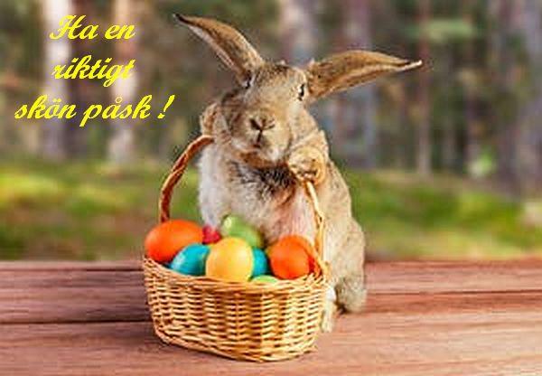 Vi önskar alla en riktigt skön påsk !